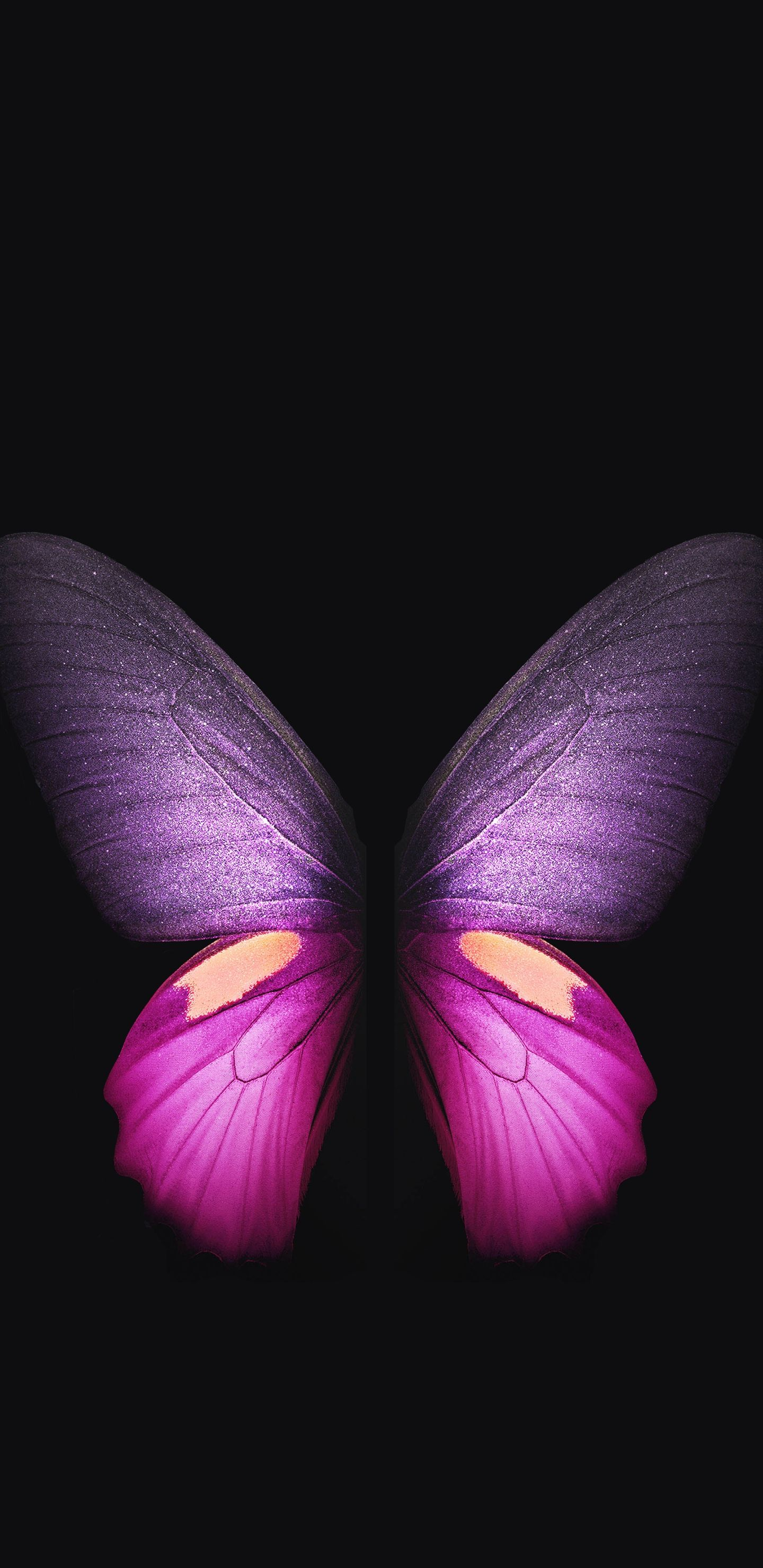 Download Samsung Galaxy Fold Wallpapers [QHD] Official 1440x2960