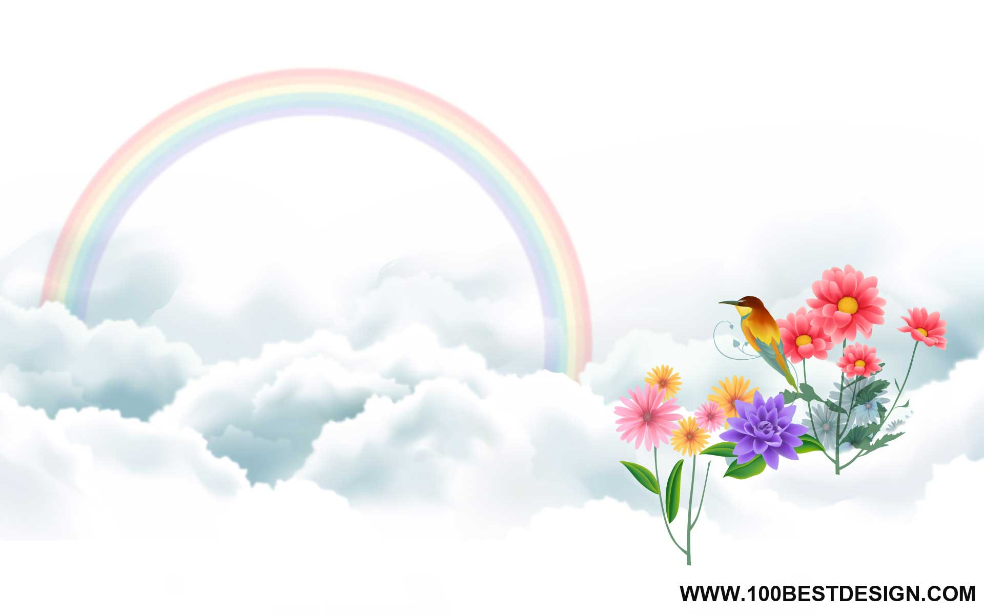 wallpaper and background bird and rainbow wide view 100 Best Design 1920x1200