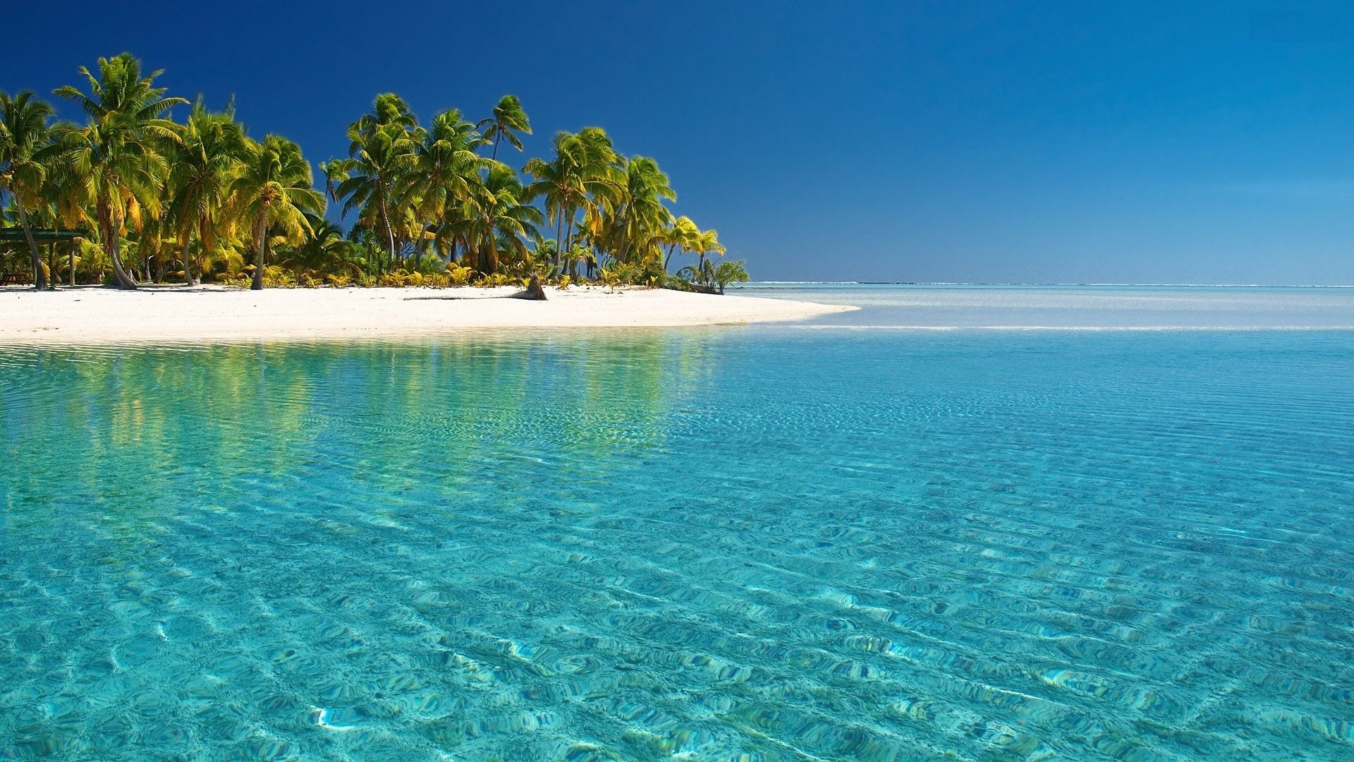 Tropical Beach Pictures For Desktop Background Wallpaper 1920x1080