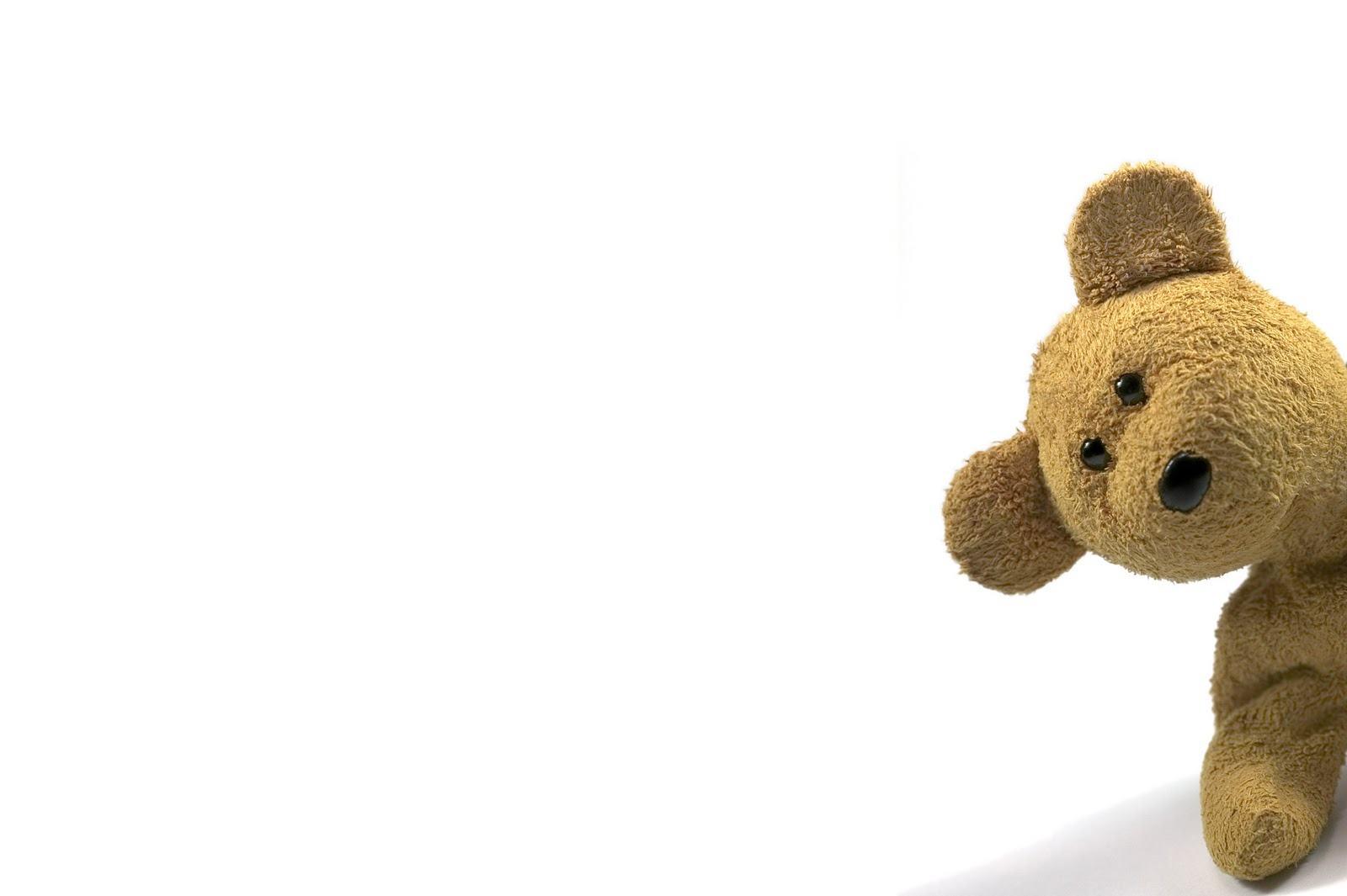 wallpaper cute teddy bear   Wallpapers 1600x1065