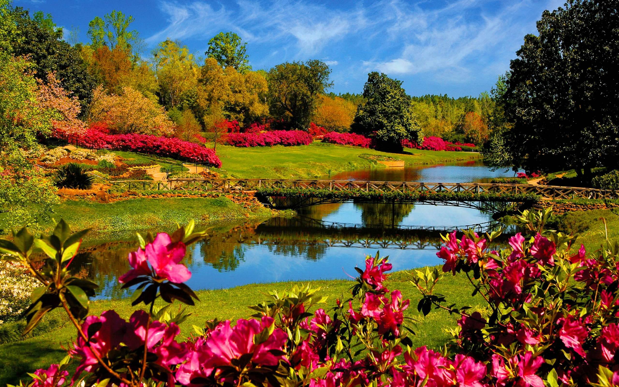 Spring Scenes Desktop Wallpapers   HD Wallpapers Backgrounds of Your 2560x1600