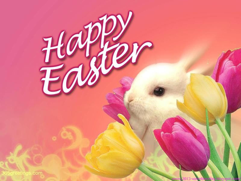 happy easter bunny this was the list of the best latest and new easter 800x600