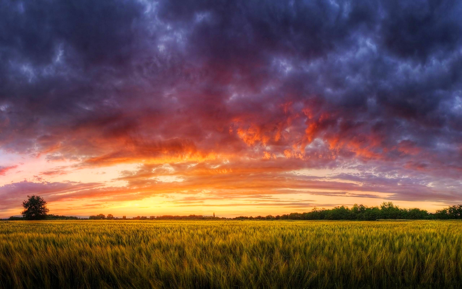 Sunrise Background   Wallpaper High Definition High Quality 1920x1200