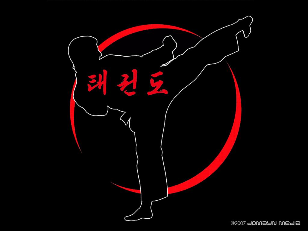 Taekwondo Wallpapers 1024x768