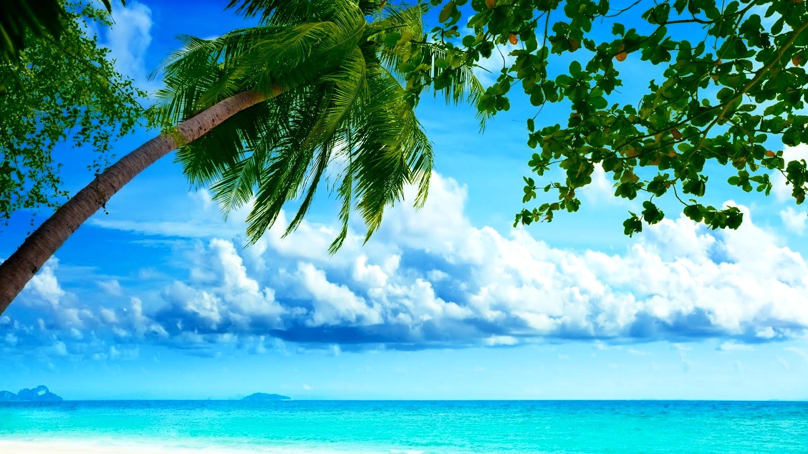 Summer Screensavers And Wallpaper Beautiful Summer 1600x900