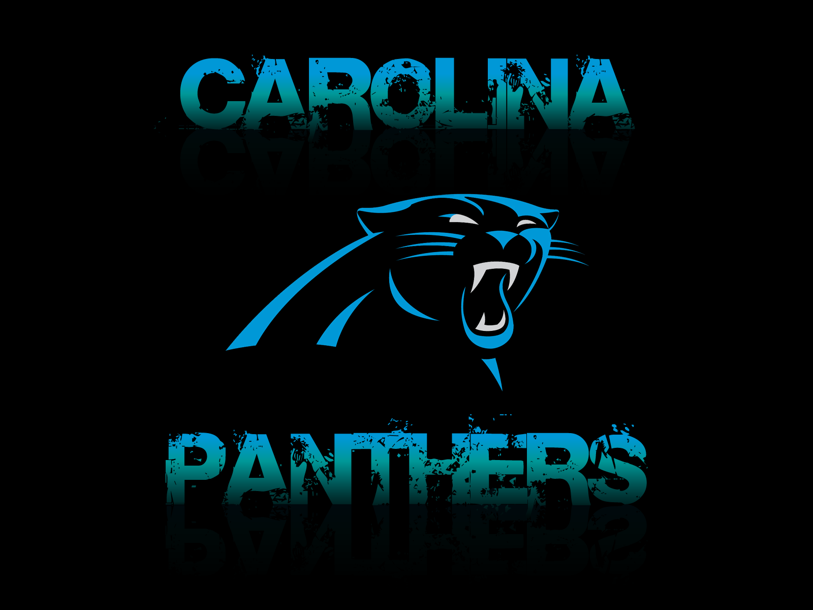 Carolina Panthers Dark Wallpaper for Phones and Tablets 1600x1200