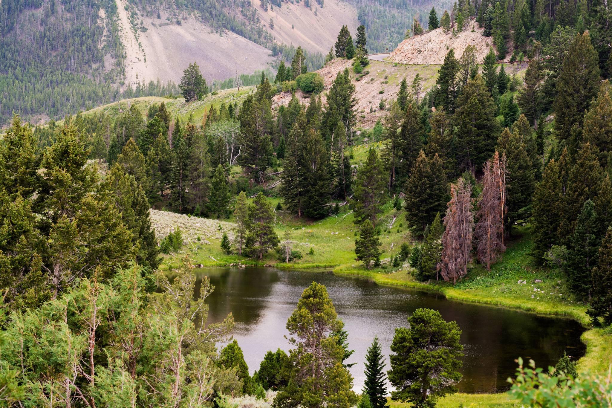 Yellowstone national park HQ WALLPAPER   152380 2048x1365