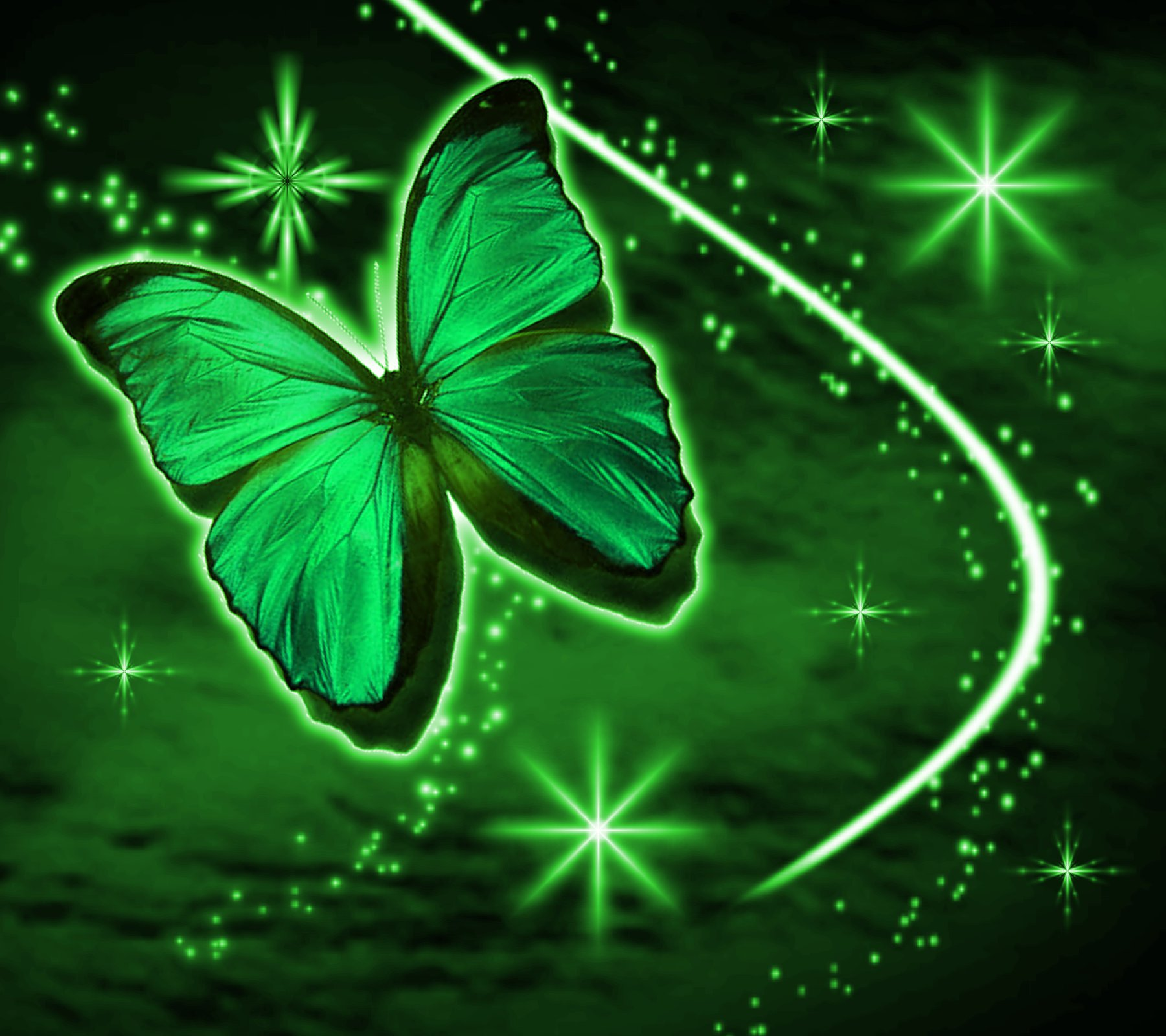 Green Butterfly With Stars Background 1800x1600 Background Image 1800x1600