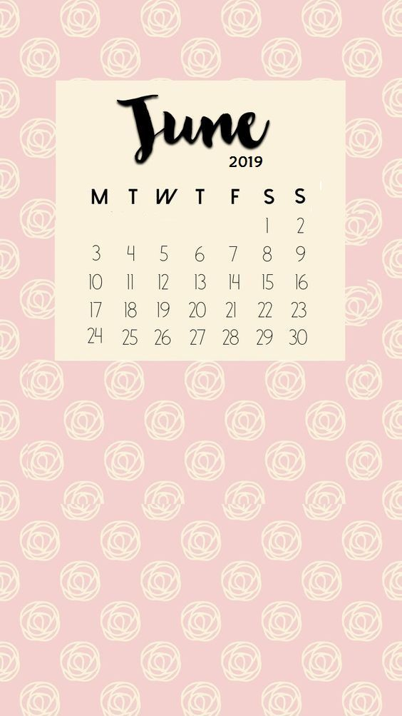 Matte Background June 2019 iPhone Wallpaper Calendar june 564x1003