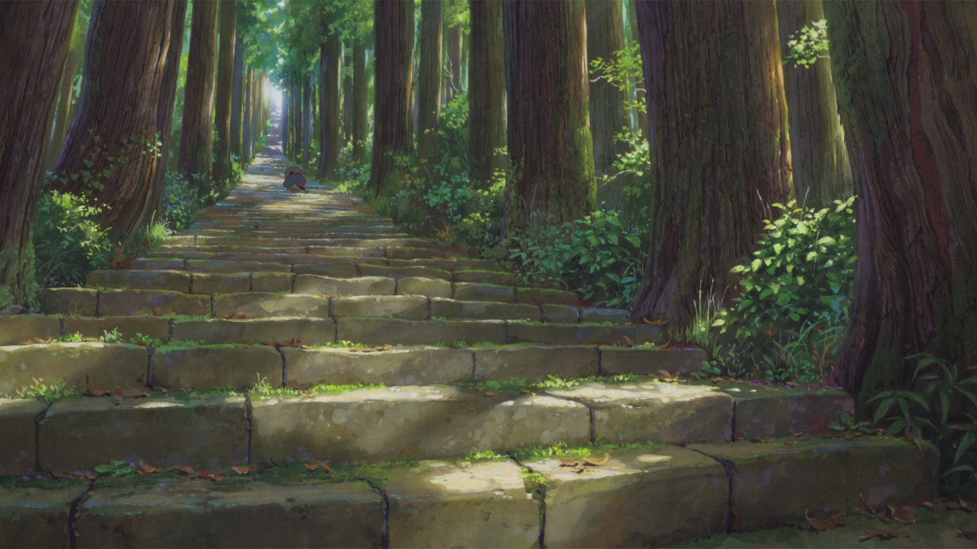Climb the forests stairs HD Wallpaper Background Image 1920x1080