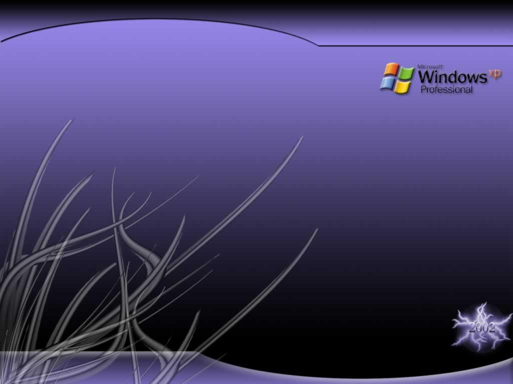 Windows 7 Professional Wallpaper