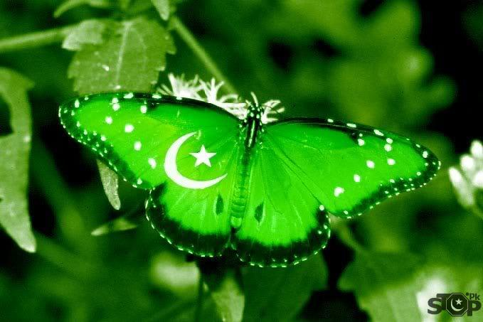 posted in pakistani flag leave a comment pakistan tehreek e insaf flag 679x453