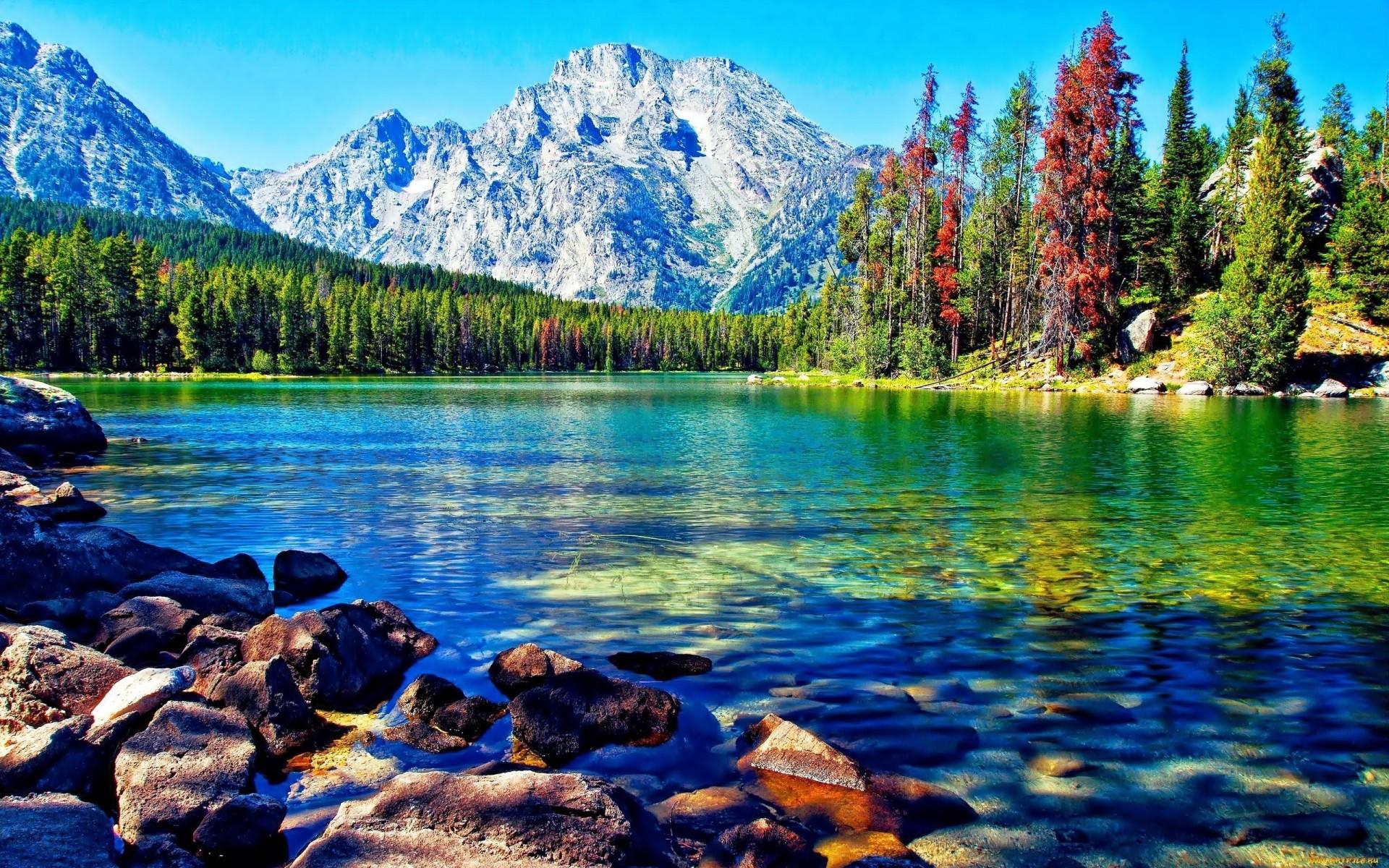 Beautiful Lake Mountain Forest Desktop Wallpapers 1920x1200