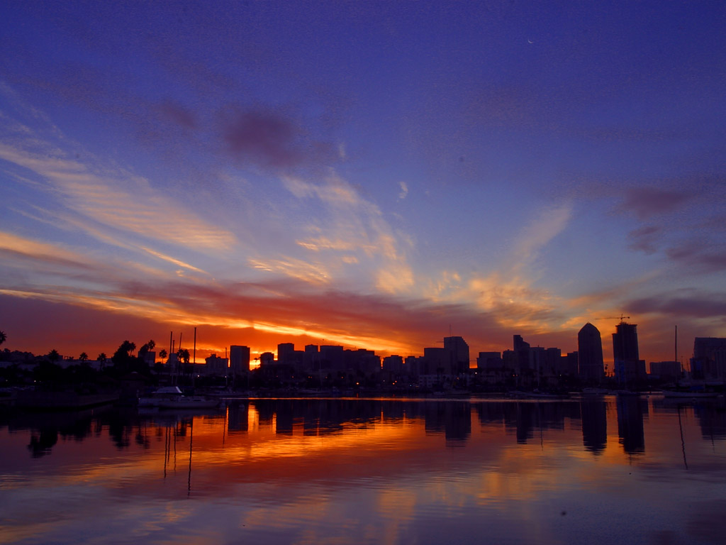 Download San Diego California Night backgrounds Wallpaper in high 1024x768