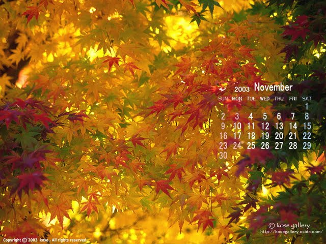 Free Desktop Calendar Wallpaper November : Free november wallpaper for desktop wallpapersafari
