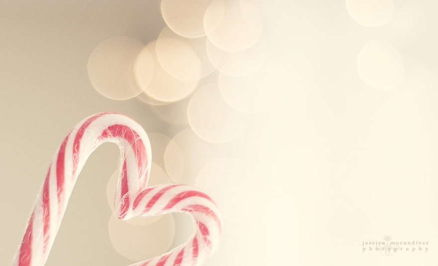 christmas candy canes   Christmas Photo 9405244 880x535