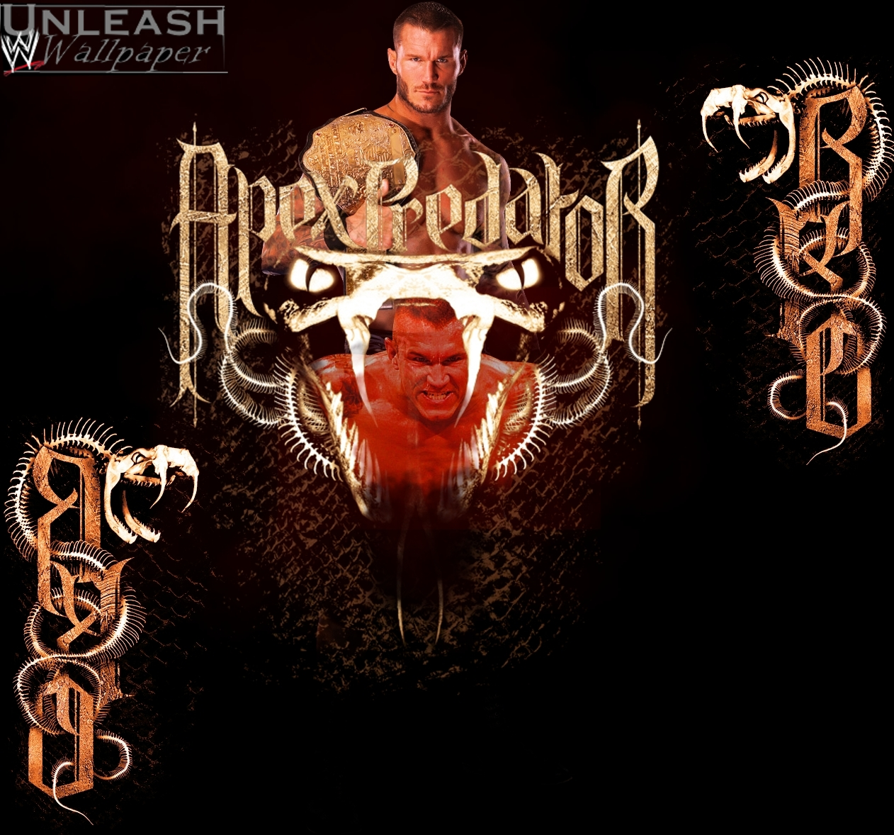 Randy Orton Viper Logo Wallpaper Wallpaper of the viper 1262x1178
