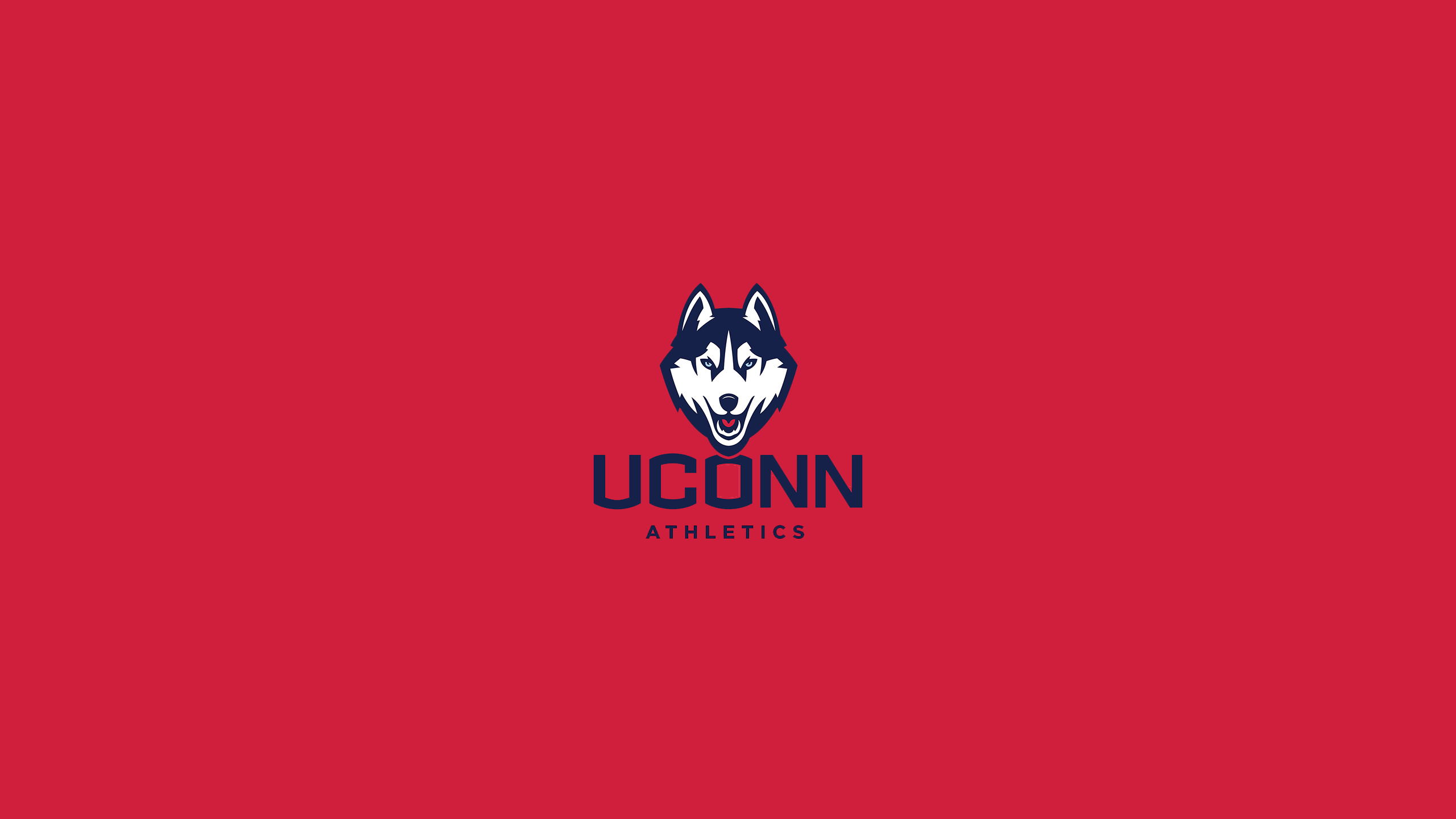 UConn Logo Images TheCelebrityPix 2560x1440