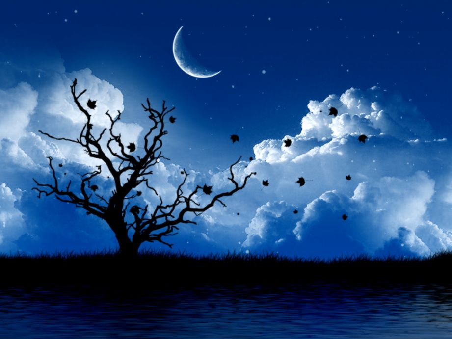 Beautiful Moon Backgrounds Nababan Wallpapers 921x691