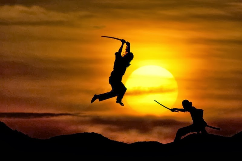 Free Download Martial Arts Wallpaper Martial Art Fight