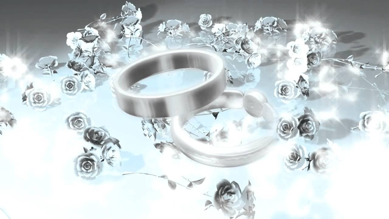 Wedding Rings Premium HD Video Background HD0435 Video Background 1280x720