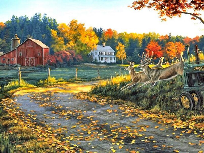 Free Download Farm And Fall Colors Wallpaper Forwallpapercom 808x606 For Your Desktop Mobile Tablet Explore 43 Winter Farm Desktop Wallpaper Farm Winter Scenes Desktop Wallpaper Hd Farm Wallpaper Farmhouse Wallpaper