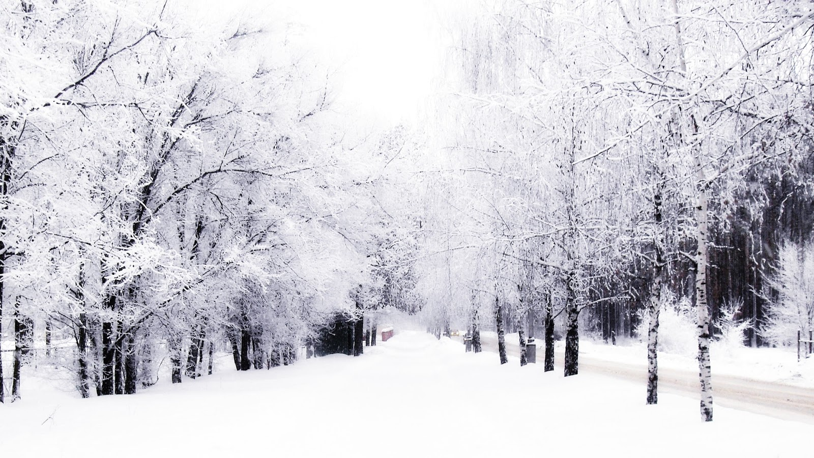 these pictures makes me want a nice toasty warm hot chocolate YUM 1600x900