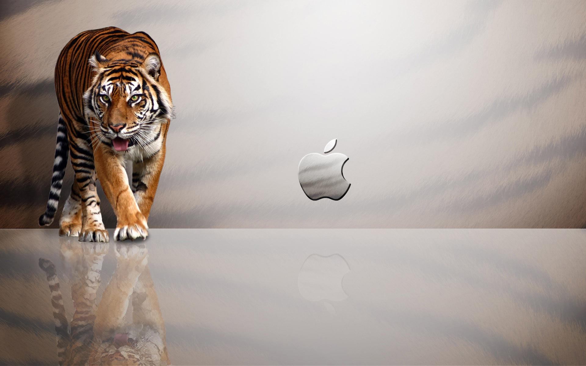 comApple Tiger Mac OS desktop hd wallpaper High Quality Wallpapers 1920x1200