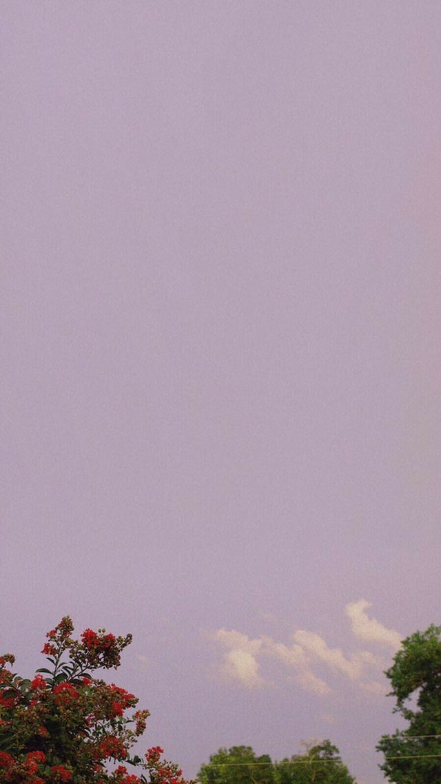 Iphone Wallpaper Aesthetic   640x1138 Wallpaper   teahubio