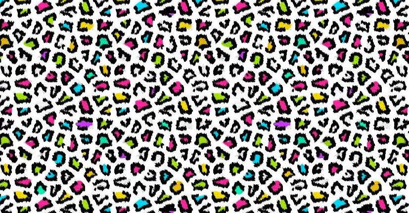 colorful animal print wallpaper animal print wallpaper for 827x431