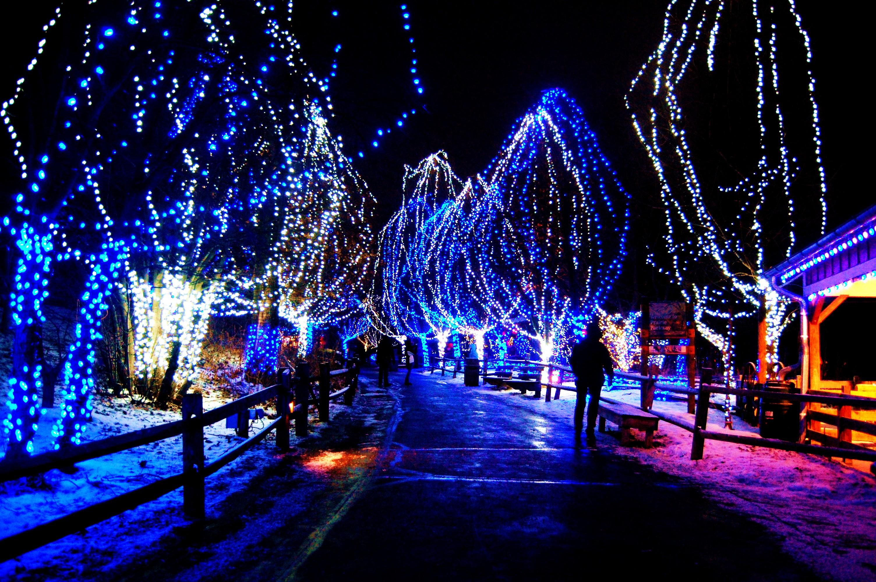 HD Christmas Lights Wallpapers 3008x2000