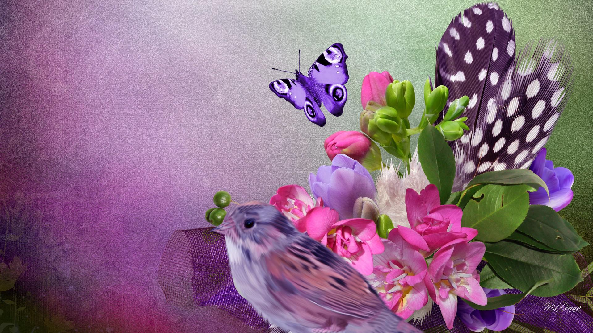 Bird butterfly blossoms - (#99229) - High Quality and Resolution ...