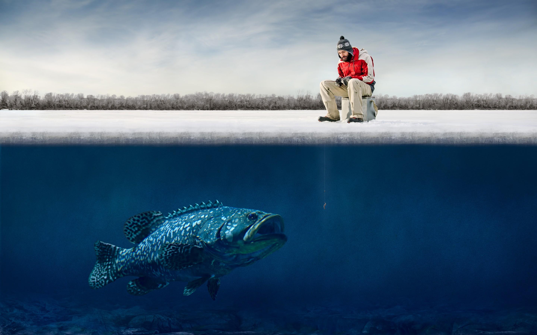 big fish Hooks humor fisherman winter fishing g wallpaper background 2880x1800