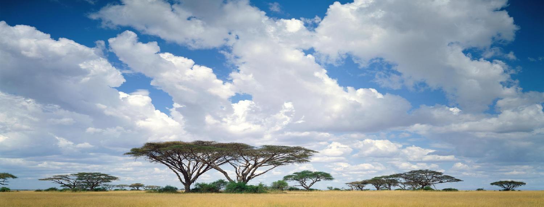 Masai Mara Game Reserve Kenya Wallpaper Download Kepler 1500x572