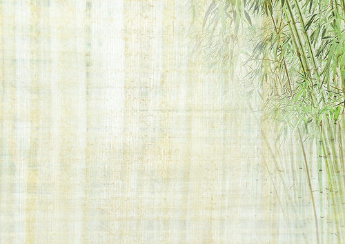 Chinese background with bamboo texture Flickr   Photo Sharing 500x354
