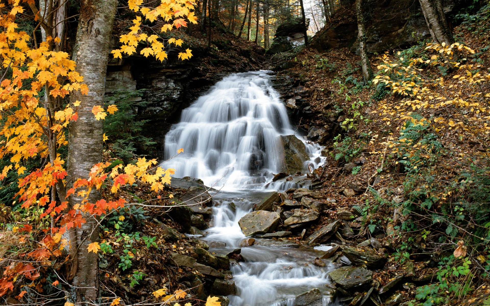 waterfall autumn wallpapers wallpaper desktop 1920x1200 1920x1200