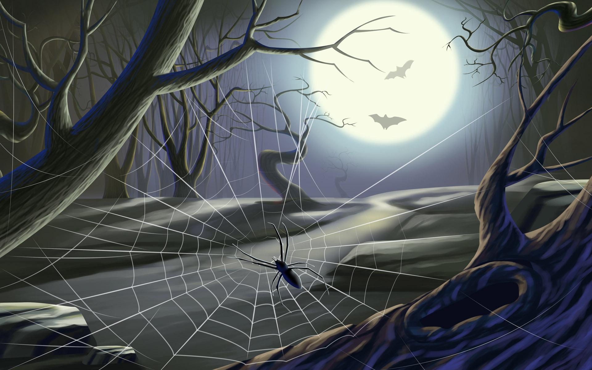 Halloween Spider Web wallpaper   480008 1920x1200