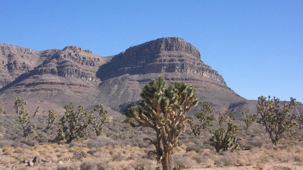Arizona Desert Wallpaper My Home And Yours