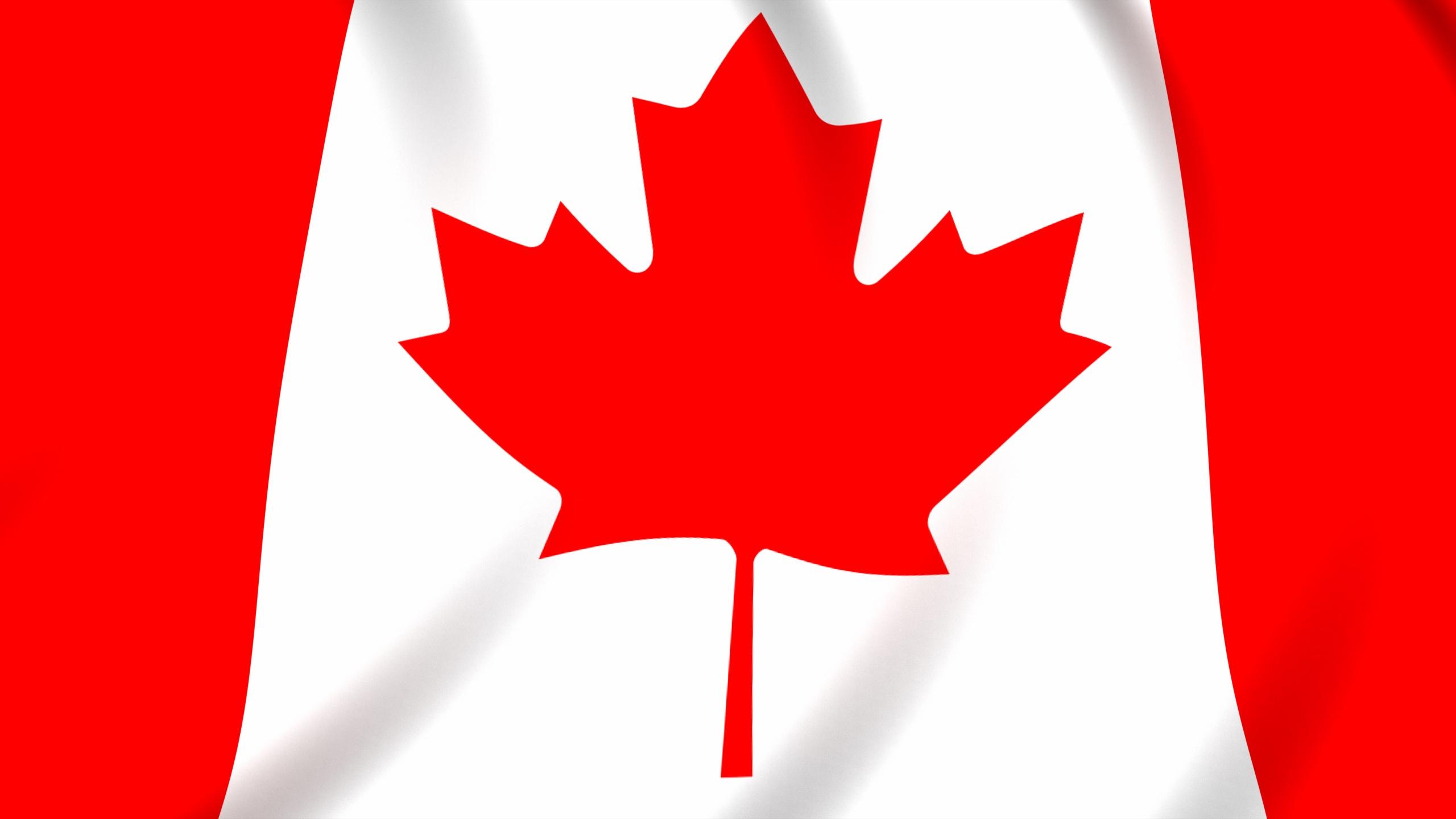 Canada flag wallpaper in 2560x1440 screen resolution 2560x1440