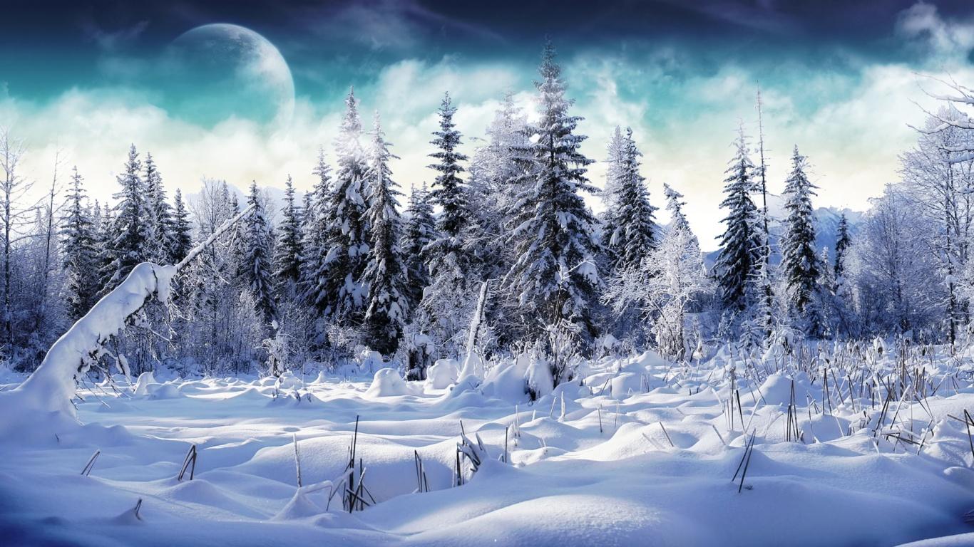 1366x768 Winter wonderland 2 desktop PC and Mac wallpaper 1366x768