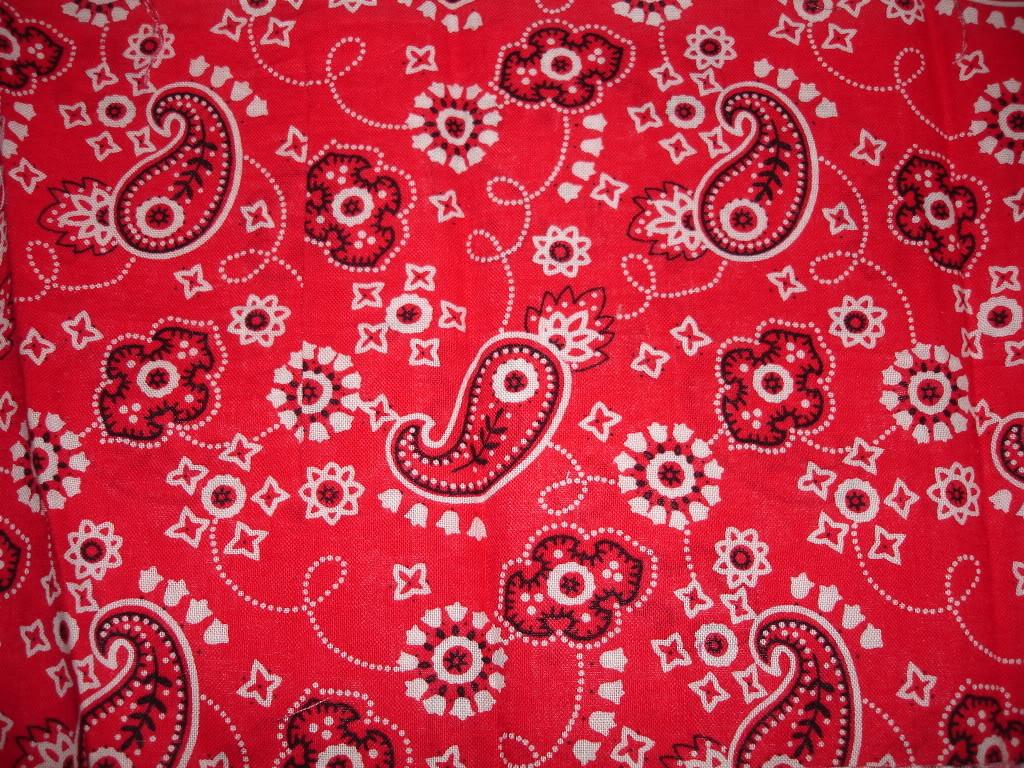 Red Bandana Wallpaper 3734 Wallpaper wallpapersstarcom 1024x768