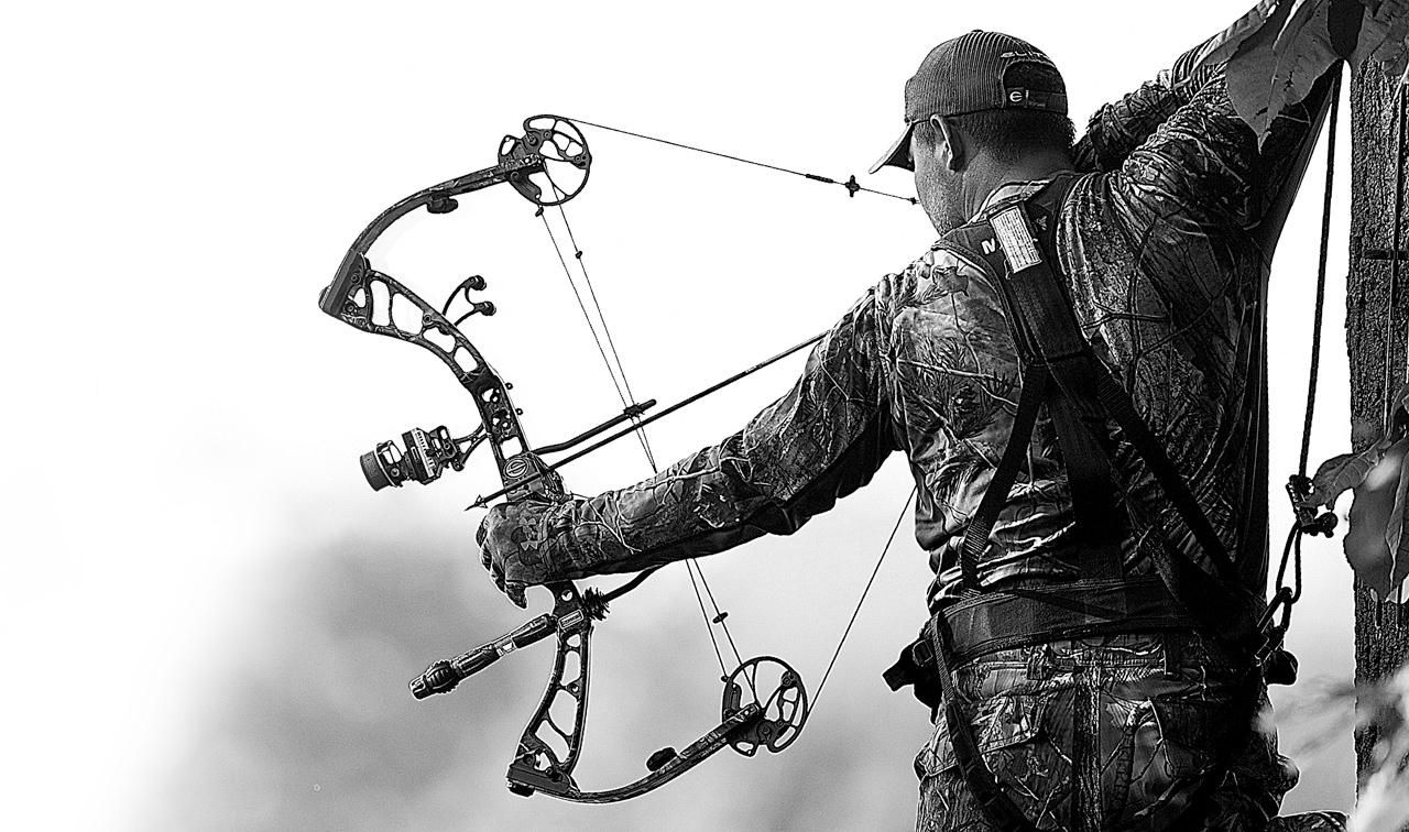elite archery wallpaper maxresdefault jpg 1280x756