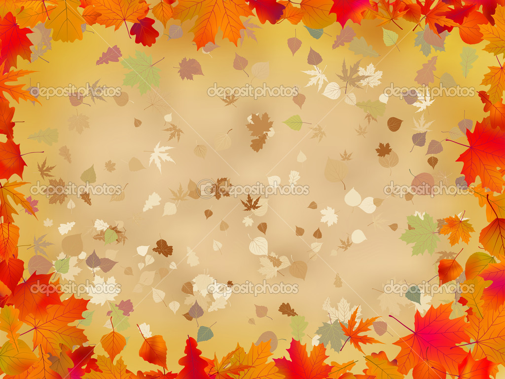 Leaves and Berries Black and White Wallpaper Border Regular Price 32 1024x768
