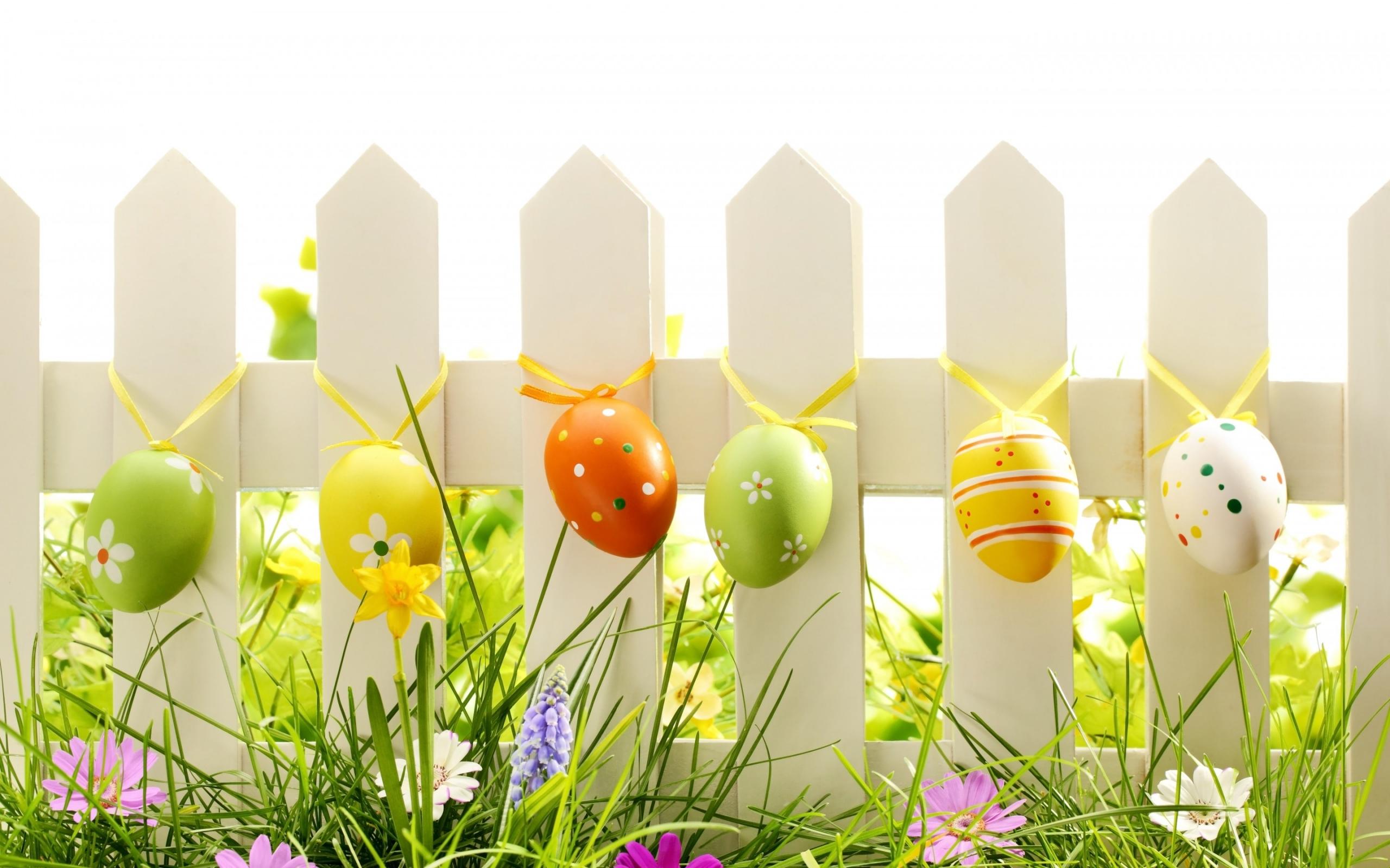 Easter 2019 Wallpaper HD AirWallpaperCom 2560x1600