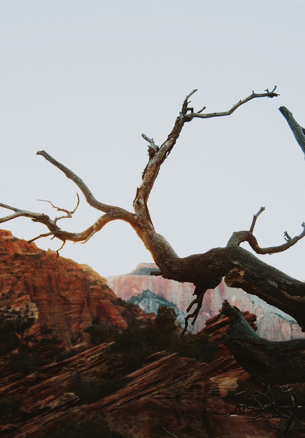 North Americas West Coast Landscapes by Ivana Cajina TRAVEL 1000x1437