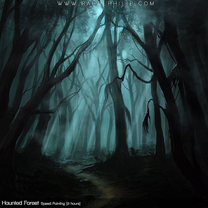 48+] Scary Forest Wallpaper on WallpaperSafari
