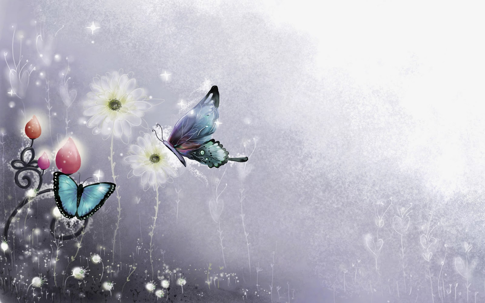 Colorful Butterfly HD Wallpapers Real Artistic 1600x1000
