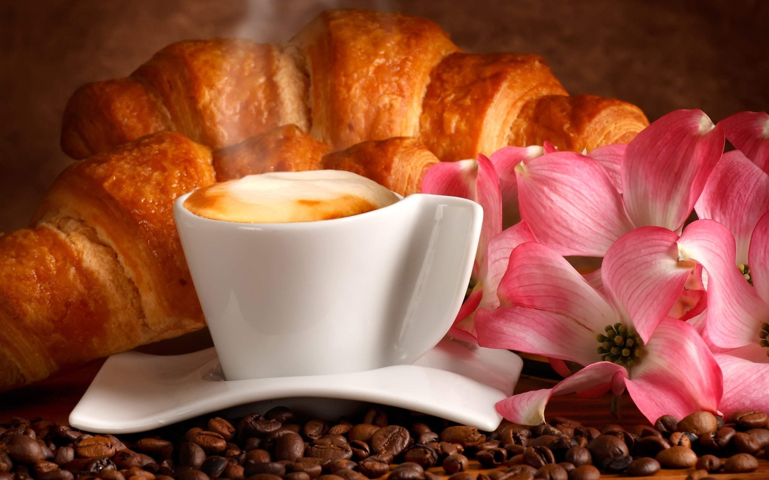 Free download Cappuccino and croissant wallpaper 1398185 [2560x1600] for your Desktop, Mobile & Tablet | Explore 94+ Croissant Wallpapers | Croissant Wallpapers,