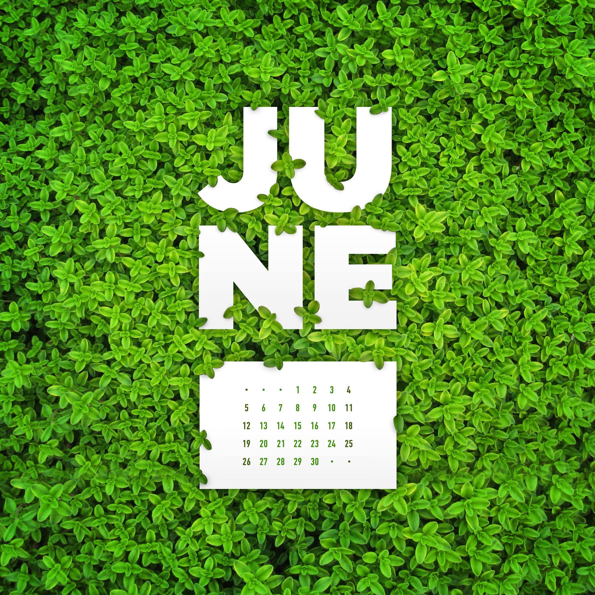 June 2016 Desktop Calendar Wallpaper Paper Leaf 2048x2048