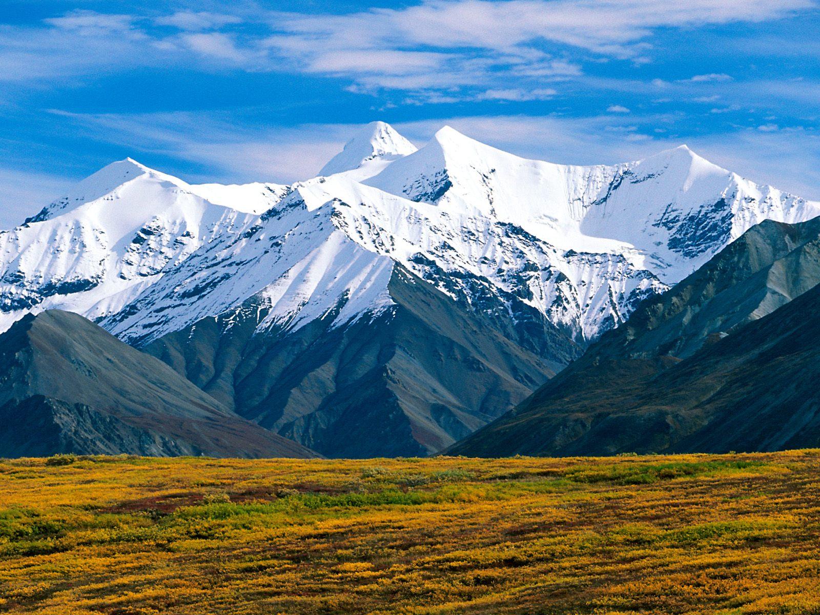 Denali National Park Alaska Wallpapers HD Wallpapers 1600x1200